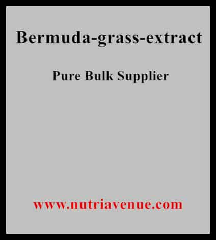 Bermuda Grass Extract