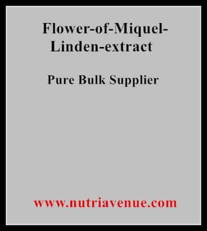 Flower Miquel Linden Extract