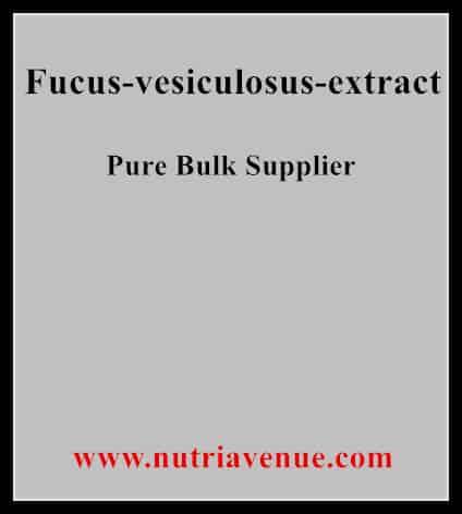 Fucus Vesiculosus Extract