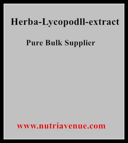 Herba Lycopodll Extract
