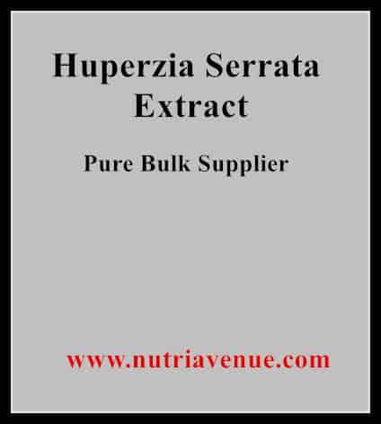 Huperzia serrata extract