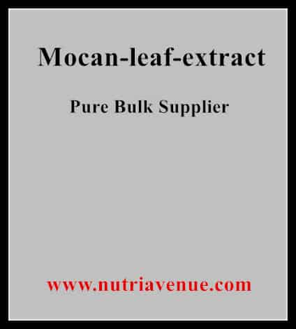 Mocan Leaf Extract