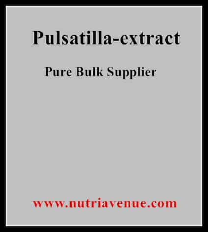 Pulsatilla Extract