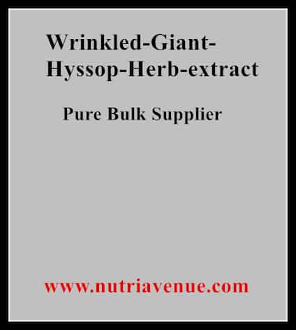 Wrinkled Giant Hyssop Extract
