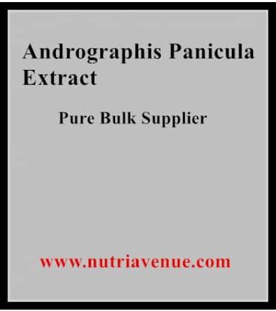 Andrographis Panicula Extract