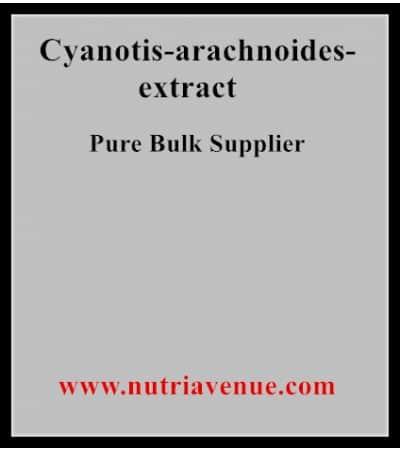 Cyanotis Arachnoides Extract