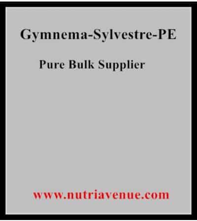 Gymnema Sylvestre PE