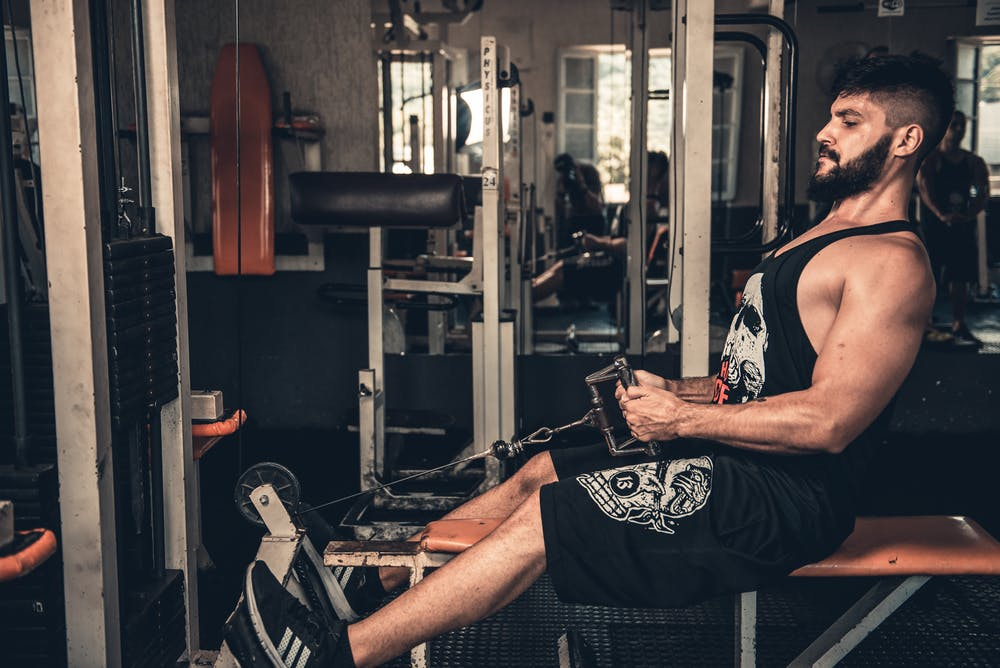 Chrysin increase testosterone